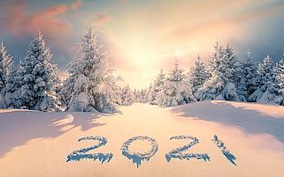iN|ES Newsletter Januar Februar 2021